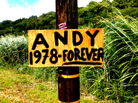 Andy Irons - Signs
